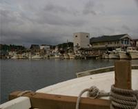[画像]漁港に戻ってきました。