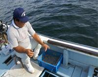 [画像]それでは泉アジの釣りを開始します。
