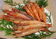 [画像]海老の栄養価と薬効について