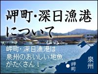 岬町・深日漁港について